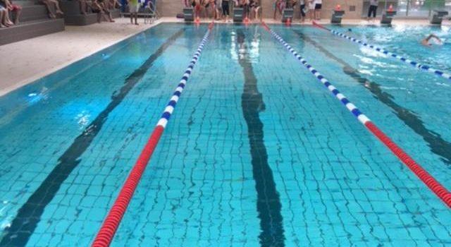 1. Schwimmfest der Altstadtschule in der Welle